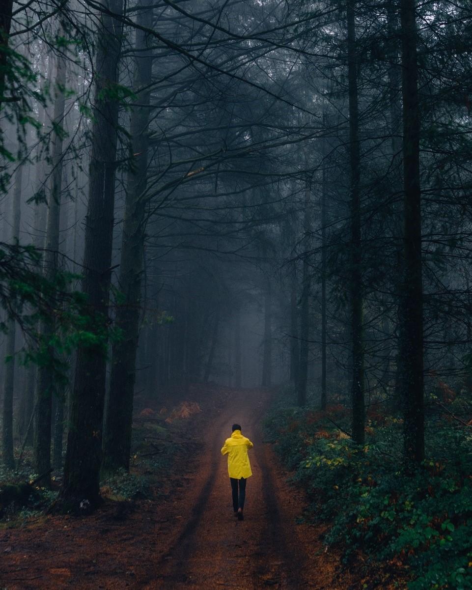 Gesundheitsbooster Spazieren gehen